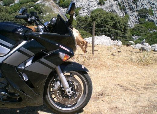 Yamaha FJR 1300 ABS – Long Test Ride - Foto 13 di 21