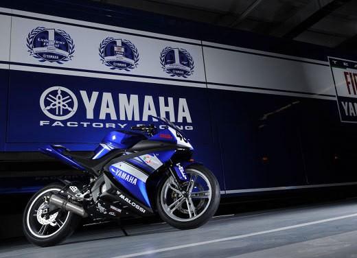 Yamaha R125 Cup - Foto 8 di 10