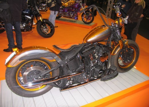 Motor Bike Expo – Custom - Foto 5 di 60