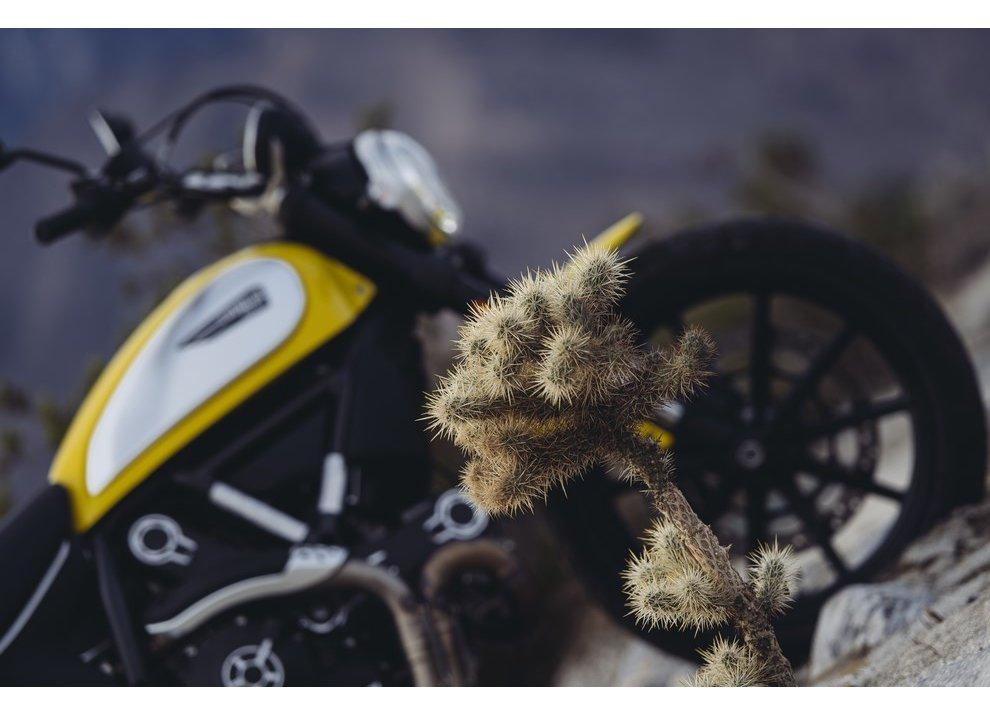 Ducati Scrambler, nuove immagini ufficiali e quattro varianti