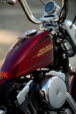 Harley Davidson Spring Break 2012 - Foto 22 di 26
