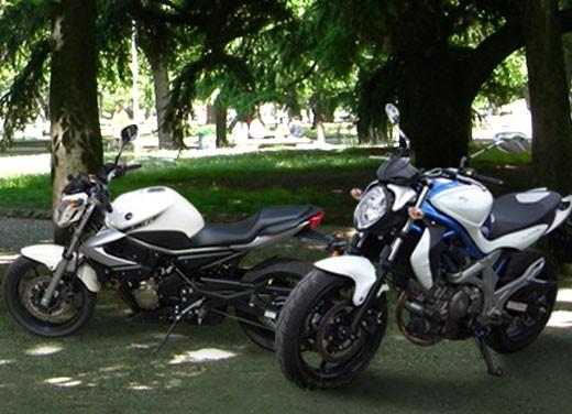 Yamaha XJ6 vs Suzuki Gladius - Foto 1 di 18