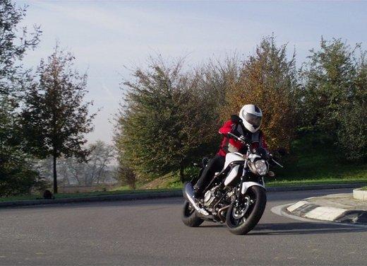 Suzuki Gladius 650: prova su strada