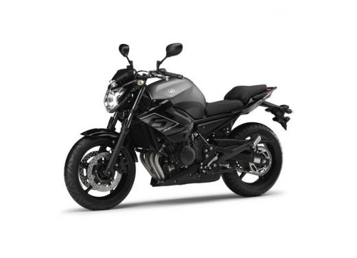 Yamaha XJ6, nuova versione SP e kit di depotenziamento per neopatentati - Foto 1 di 5