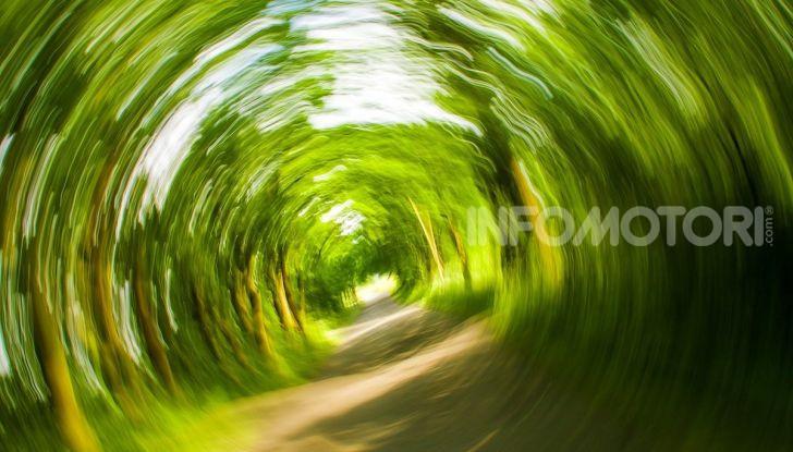Mal d'auto: rimedi alla cinetosi e alla nausea in macchina - Foto 9 di 9
