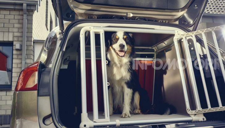 Nuova Ford Focus wagon, sicura per uomini e animali - Foto 2 di 7