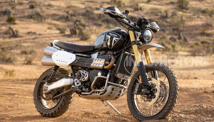 Triumph sceglie Ernie Vigil per la Norra Mexican 1000 - Foto 1 di 5