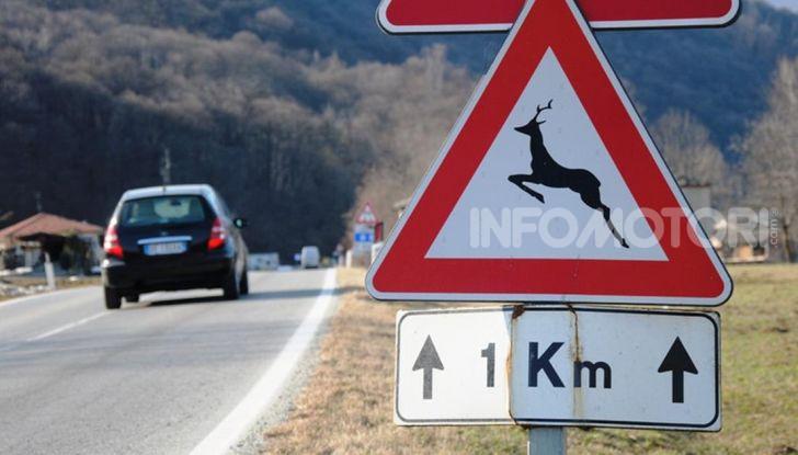 attraversamento animali cartello
