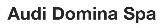 domina logo