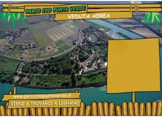 focus: Parco Zoo Punta Verde - Foto 5 di 5