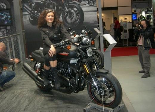 Harley-Davidson: novit? 2010
