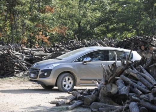 Peugeot 3008 - Foto 6 di 26