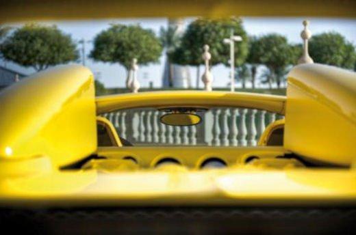 Bugatti Veyron Grand Sport Special Edition al Qatar Motor Show - Foto 17 di 17