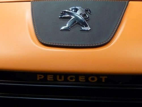 Peugeot RCZ Arlen Ness - Foto 22 di 30