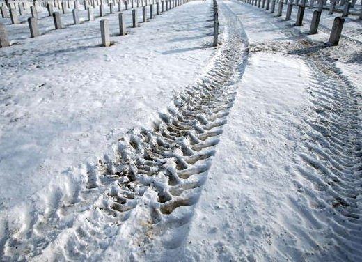 Pneumatici invernali: quando montarli e quando entra in vigore l'obbligo - Foto 5 di 8