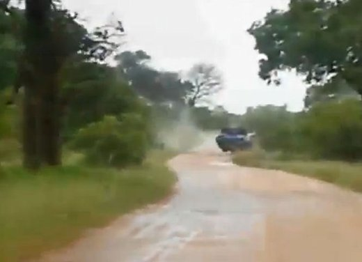 Elefante attacca un'auto in Sudafrica video - Foto 11 di 14
