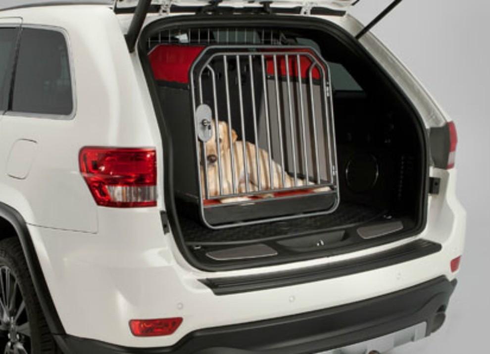 Animali In Auto Come Trasportare Cani E Gatti Secondo Il Codice