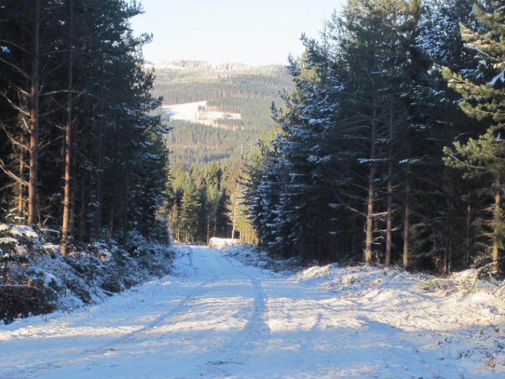 Rally di Svezia: tutte le informazioni sulla gara - Foto 6 di 6