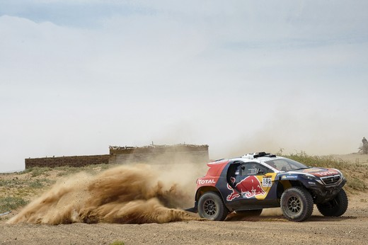 Silk Road Rally: due Leoni al comando